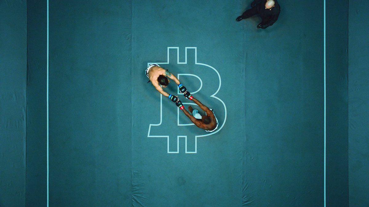 Karate Combat Fighting Arena Features Bitcoin Symbol